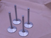 Stainless One Piece Race Valves