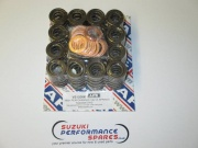 APE Heavy Duty Valve Springs vs1200k