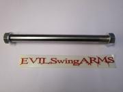 Evil Kawasaki Rear Axle Assy